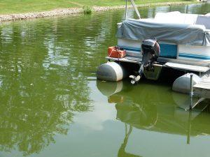 IL Lake Algae